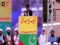 [استحکام پاکستان وامام مہدیؑ کانفرنس] Speech: Syed Ali Hussain - 21 May 2017 - Urdu