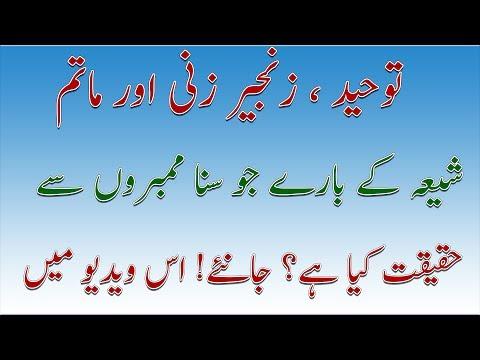 Shia Aqaid   Zanjeer Zani aur Matam   Nice Talk   Allama Ameer Hussain Naqvi