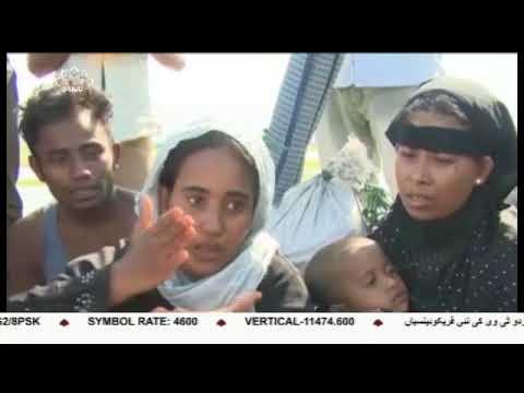 [06Oct2017] بے کس و مظلوم، روہنگیا مسلمان - Urdu