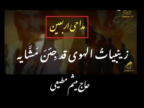 زینبیات الهوی قد جئن مشایه - حاج میثم مطیعی  | Arabic