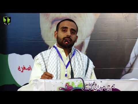 [Wilayat-e-Haq Convention 2018] Manqabat: Br. Ayjaz Ali Shah | Asgharia Org. Pak - Urdu