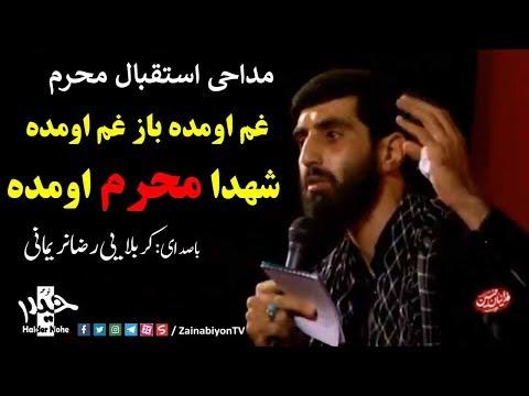 غم اومده باز غم اومده شهدا محرم اومده - سید رضا نریمانی (مداحی اس�