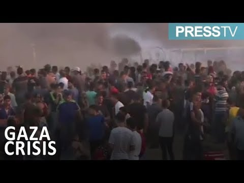 [15 September 2018] 3 Palestinians protesters shot dead east of Gaza - English