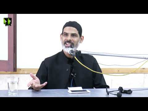 Topic: Falsfa Wa Aadab-e-Ziyarat e Imam Hussain (as) | Moulana Mubashir Zaidi - Urdu