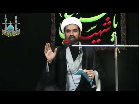 CLIP | علی(ع) کا طرزِ زندگی | Maulana Mehdi Abbas | Urdu
