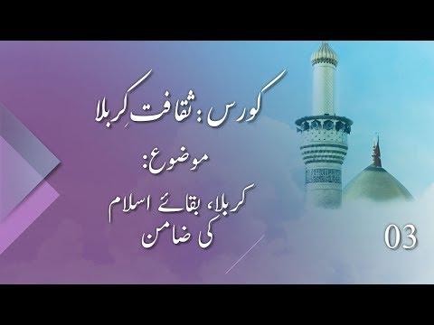 Karbala , Baqay e Islam Ki Zamin | کربلا، بقائے اسلام کی ضامن | Saqafat e Karbala | Part 03 | 17