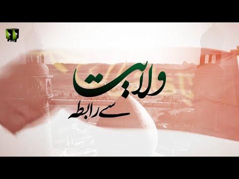 [Clip] Wilayat Say Raabta - ولایت سے رابطہ | Moulana Ali Naqi Hashmi - Urdu