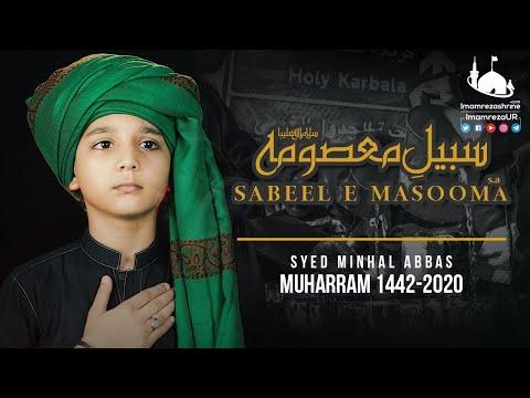 New Noha 2020   Ye Hai Sabeel E Masooma   Syed Minhal Abbas   New Muharram Nohay 2020 - Urdu