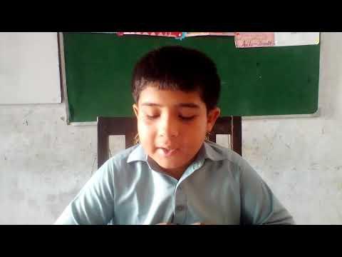 [ Introduction to Aima] Imam Ali Amir ul Momineen I Mohsin Mehdi   English/Sindhi
