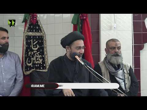 Shiyan e Ali (a.s) Ki Khasosiyat   حجّۃ الاسلام مولانا السیّد شہنشاہ حسین نق�