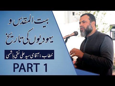 Discussion About Palestine & Israel History || Syed Ali Naqi Hashmi || Part 1 - Urdu