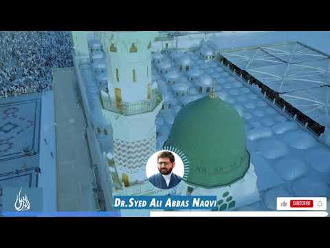 045 | Hifz-e-Mozoee I Infallibility of the Prophet of Islam in Speech and Character | Dr Ali Abbas Naqvi | Urdu
