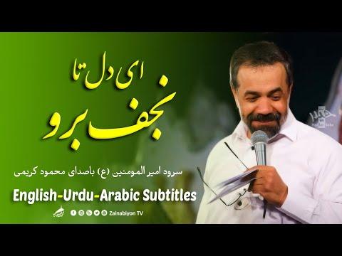 ای دل تا نجف برو - محمود کریمی | Farsi sub English Urdu Arabic