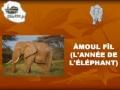 Amoul Fil - Francais French