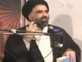 Saqit, Mazloom Aur Zalim by Aga Jawad Naqvi - Definitions - Urdu