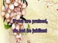 Some Beautiful Sayings of Imam Baqir (a.s.) - English