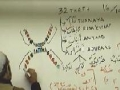 [Lesson 08] Tajweed - Learning Quraan - H.I. Abbas Ayleya - English