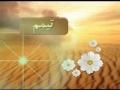 Amozish e Namaz Tasweeri - Tayammum - Persian