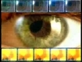 The Miracle in the Eye- English