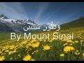 Surah Teen by Alafasy - Arabic
