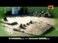 Wa Hassan (A.S.) Sabz Qaba - Ali Waris 2011 - Urdu
