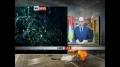 Mubarak steps down - 11Feb2011 - English