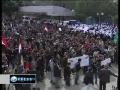 Gaza youths celebrate Egypt Revolution - Feb 12 2011 - English