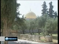 Muslims celebrate Prophet Mohammad birthday in al-Aqsa - 15Feb2011 - English