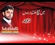 Main Taighe Alamdar Hoon - Manqabat Shadman Raza 2011 - Urdu
