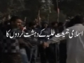 Jamiat attack on Hussain (as) Day at Punjab University - 22 December 2011 - Urdu