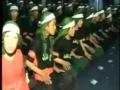 Afghani Nouha - Afghani - NO SOUND