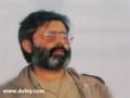 صورتگران شیدا Shaheed Aviny - Farsi