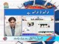 [24 May 2012] Program اخبارات کا جائزہ - Press Review - Urdu
