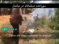 [Viewers Discretion Strongly Advised] Brutality in Myanmar وحشی گری در میانمار - Farsi sub English