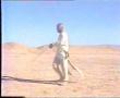 Movie - Al-Waqya Al-Taff - 23 of 24 - Arabic