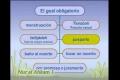 Leyes prácticas 15 Gusul Generalidades - Spanish