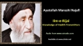 [ENGLISH] Ilm e Rijal - Excerpt from Ayatullah Marashi Najafi Speech - English