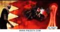 [27 Jan 2013] International media coverage of Bahrain revolution - English