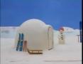Kids Cartoon - PINGU -Pingu and the Snowball Fight - All Languages
