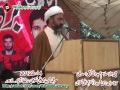 Speech H.I. Abdul Khaliq Asadi - 17th Martyrdom Anniversary Dr. Muhammad Ali Naqvi Shaheed - 4 March 2012 - Urdu