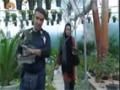 [02] Drama Serial : Shadows - پرچھائیاں - Urdu