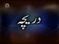 [12 Mar 2013] A Gateway to Technology - Daricha - دریچہ - Urdu
