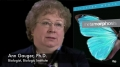 Biologist Ann Gauger on Metamorphosis Still a Mystery - English