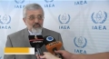 [08 June 13] US pressure heavily politicized IAEA: William Beeman - English