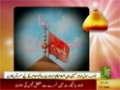 Weladat-e-Imam Hussain a.s - Urdu