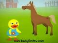 Tillie the Duck - Teaches Animals in the Farm - English