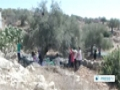 [17 Nov 2013] israeli army to seize Palestinian farmers land - English