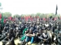Arbaeen day In Nigeria 1435/2013 - Nigerian