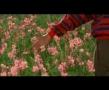The Color Of Paradise - Part V - Majid Majidi - Movie - Farsi with English sub
