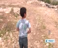 [11 May 2014] israeli settlers kidnap 6-year-old child - English